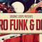 Retro funk   disco drum   instrument loops review