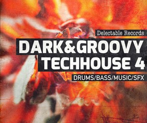 Loopmasters dark and groovy techhouse 4 300