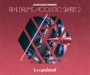 Loopmasters as2 banner 300