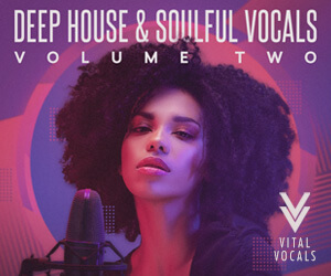 Loopmasters vital vocals deep house   soulful vocals vol 2 300x250