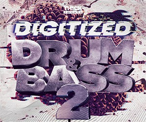 Loopmasters d dnb 2 300x250px