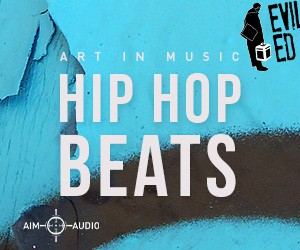 Loopmasters hip hop beats 300x250
