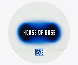 Loopmasters house of bass 300x250