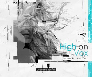 Loopmasters high on vox delectable records 300x250