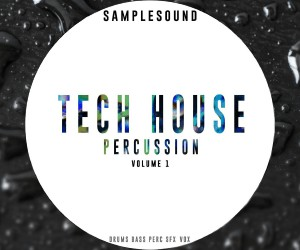 Loopmasters tech house percussion300x250 8