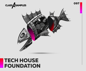 Loopmasters class a  samples tech house foundation 300 250