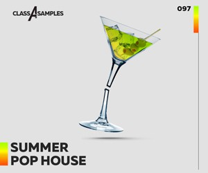 Loopmasters class a  samples summer pop house 300 250