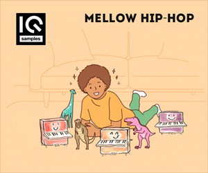 Loopmasters iq samples mellow hip hop 300 250