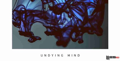 Undying mind techno loops engineering samples 512