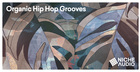 Organic Hip Hop Grooves