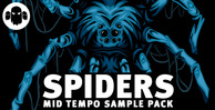 Gs spiders mid tempo sounds 512 web