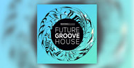 Skifonix sounds   future groove house 1000x512web