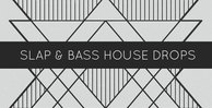 Slap   bass house drops 1000x512web
