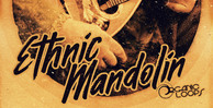 Royalty free indian samples  mandolin loops  authentic world music  mandolin phrase loops at loopmasters.com rectangle