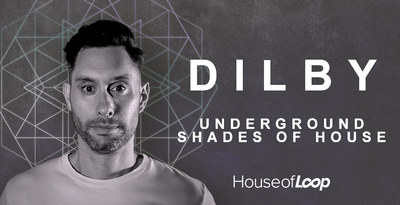 Dilby underground shades of house 100x512 lowquality