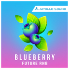 Blueberry future rnb 1x1